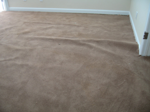 stretched carpet due to overwetting, due to cheap carpet cleaning