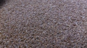 polypropylene carpet example